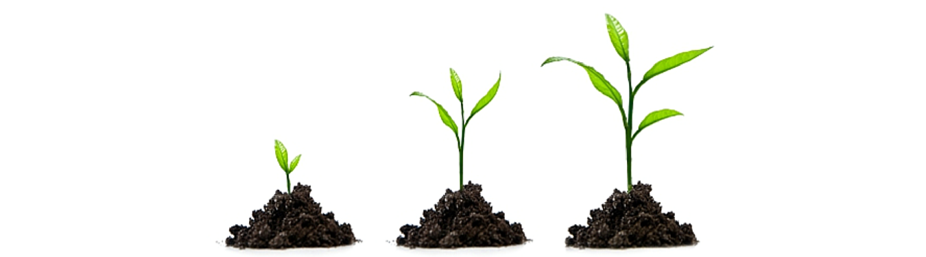 Top 3 Things Limiting the Growth of Your Agency