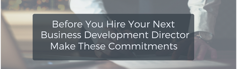 Before you hire your next Business Development Director make these commitments